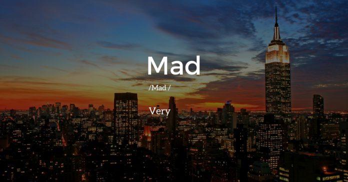 slang words of NewYork