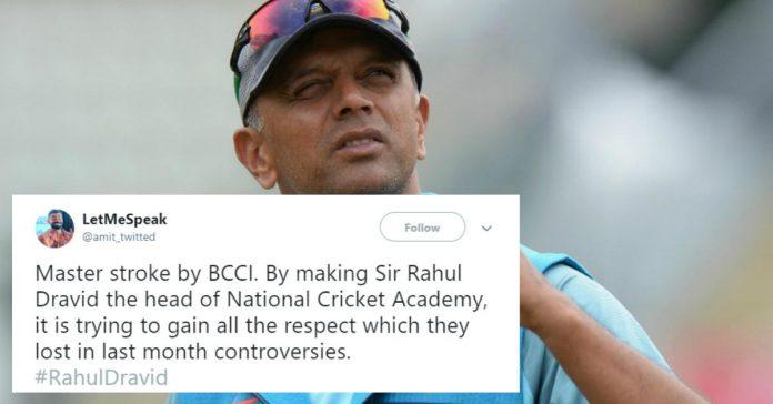rahul dravid cricket head
